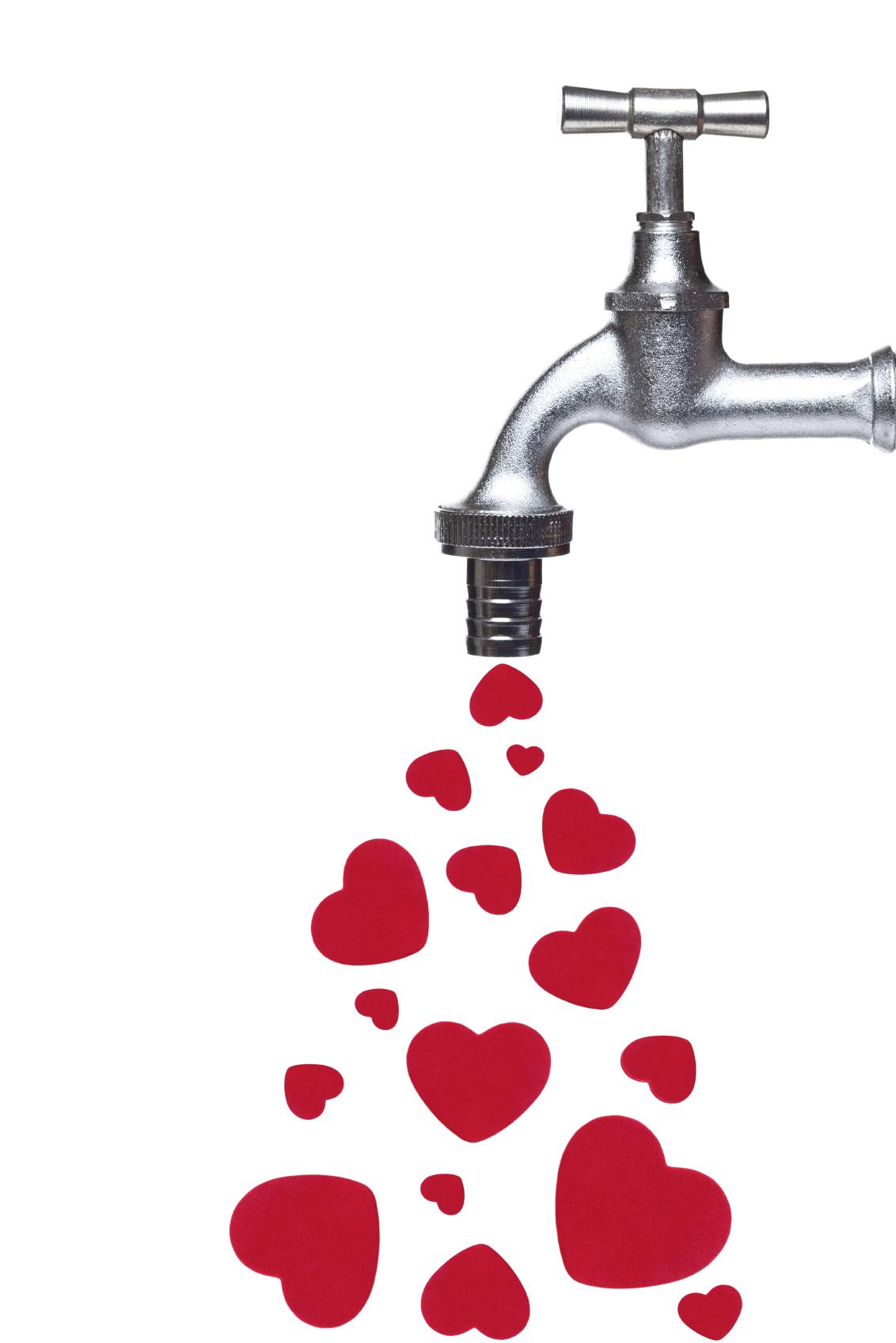 Show Your Plumbing Some Love Plumbing In Orange County