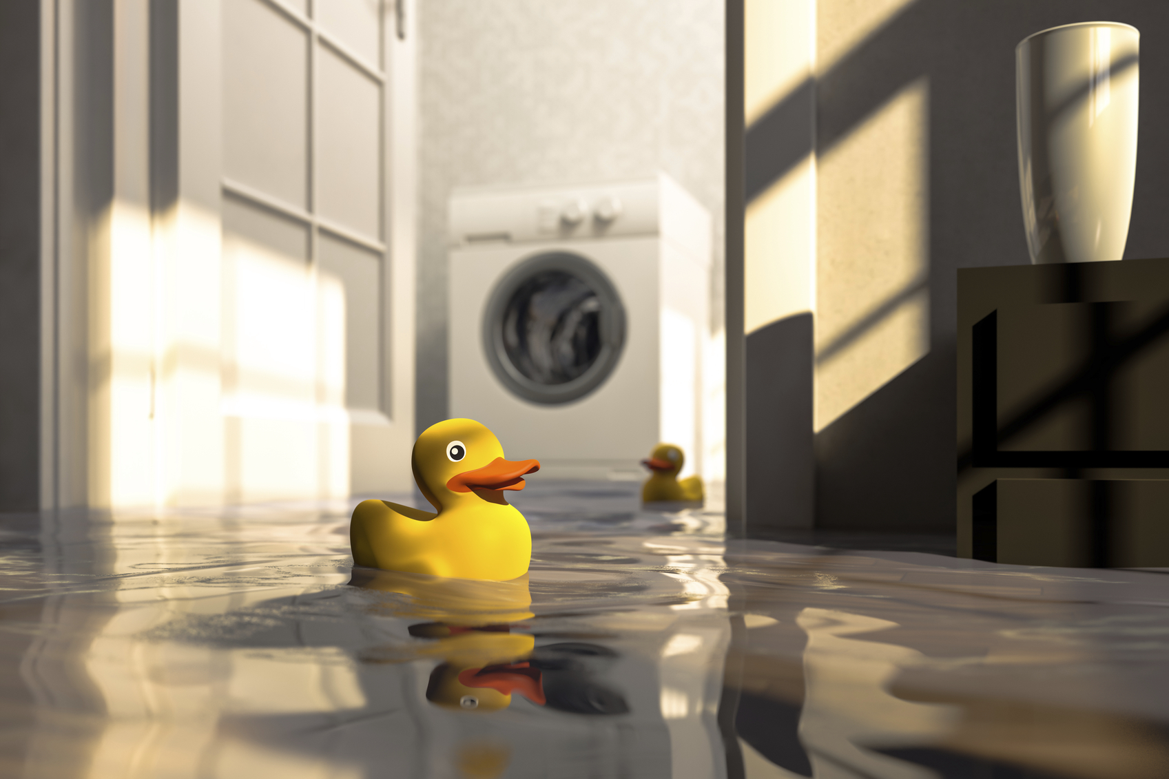 Water damage caused by defective washing machine and rubber ducks ...