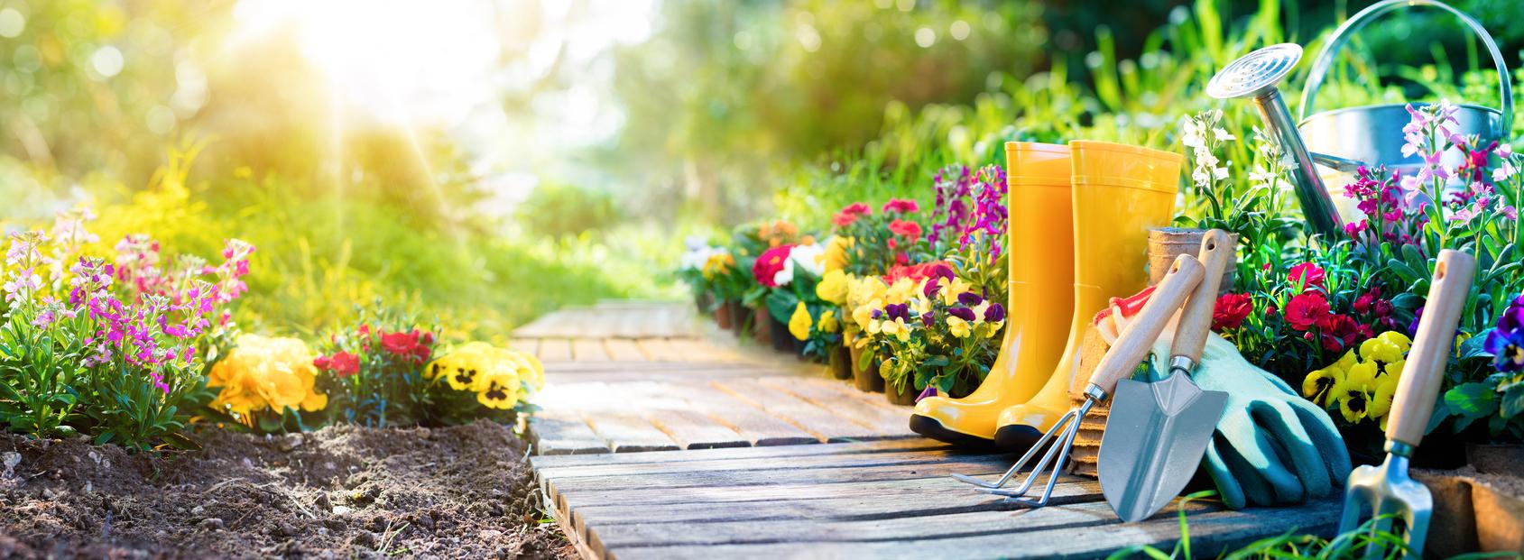 6 Spring Plumbing Maintenance Tips Barker And Sons Plumbing